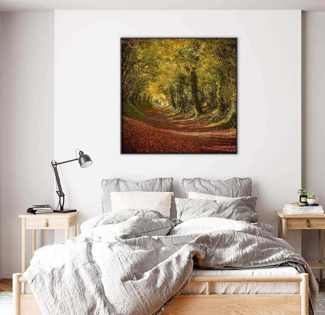 Autumn tree tunnel picture hanging on bedroom wall